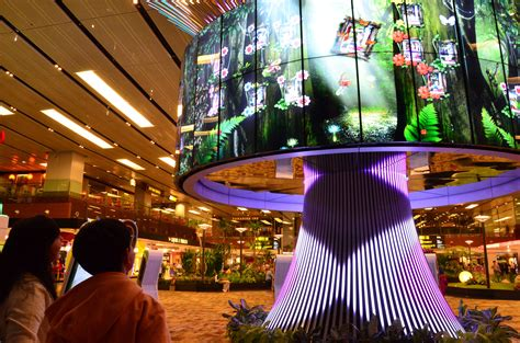The Social Tree Gets Planted in Changi Airport Terminal 1